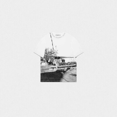 White Golden T-shirt with photograph print